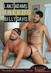 Image of Lanz Adams Breeds Billy Davis